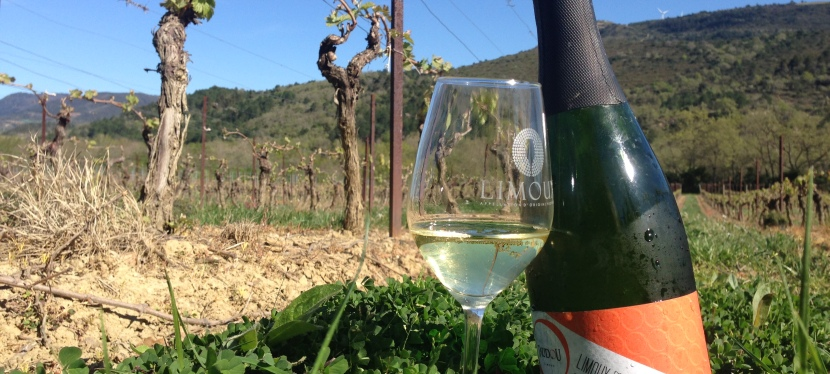 Picpoul + Limoux, Two Languedoc Appellations To Know
