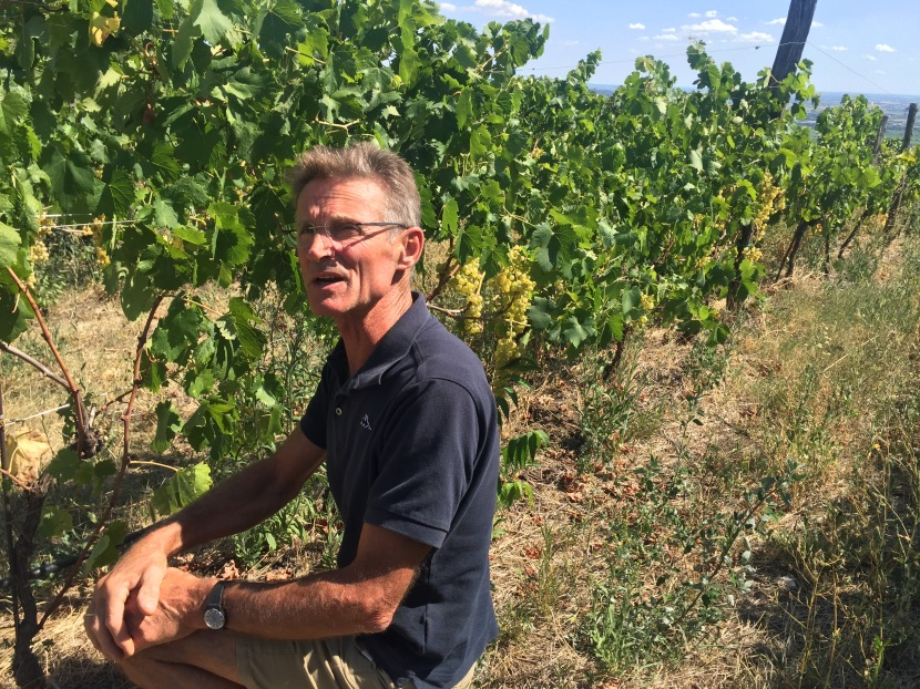 Talking #SkinContact In The Gambellara Hills With Angiolino Maule